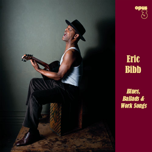 Eric Bibb Blues etc